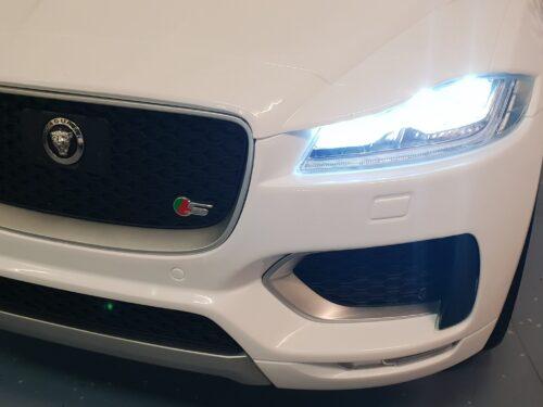 Logo jaguar kinder auto